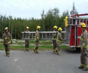 Puzzle Pompiers portant une échelle