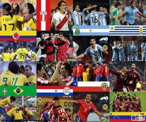 Puzzle Quarts de finale, Argentine 2011