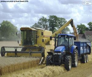Puzzle Récolteur et tracteur
