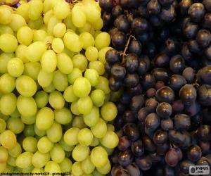 Puzzle Raisins