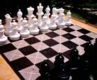 Échiquier d'échecs avec toutes les pièces placées pour lancer le jeu