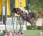 Equitation - Cheval et cavalier dans l'exercice de saut