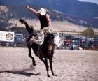 Rodeo - Cavalier dans la preuve du cheval de selle, un cheval sauvage