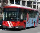 Autobus urbain
