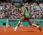 Match de tennis avec les spectateurs dans les gradins
