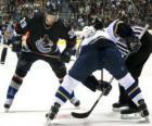 Joueurs dans un match de hockey sur glace