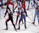 Le biathlon dans un sport d'hiver de la combinaison de la Croix-ski pays avec tir à la cible.