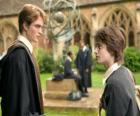 Harry Potter et son ami Cedric Diggory
