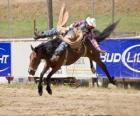 Cow-boy monté sur un cheval cabré dans un rodéo