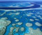 La Grande barrière de corail, les récifs coralliens à travers le plus grand monde. Australie.