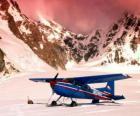 Cessna 185 dans la neige