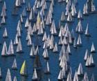 Sailing régate
