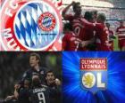 Ligue des Champions - UEFA Champions League 2009-10 en demi-finale, FC Bayern München - Olympique Lyonnais