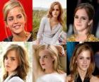Emma Watson est connu pour son rôle de Hermione Granger, l'un des trois étoiles de la série de films Harry Potter