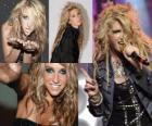 Kesha est une chanteuse et compositeur américain.