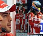 Fernando Alonso célèbre sa victoire à Monza, en Italie Grand Prix (2010)