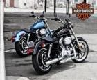 Deux Harley davidson