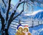 deux ours très chaud dans un paysage de Noël