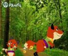 Pokopet Fox de Panfu