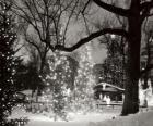 Noël dans le parc