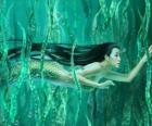 Natation sirène dans les algues