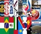 Clubs de la FIFA World Cup 2010 EAU
