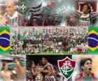 Fluminense Football Club champion de l'édition 2010 du Championnat du Brésil
