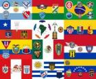 Copa Libertadores 2011