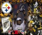 Steelers de Pittsburgh AFC champion 2010-11