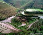 Paysage de la Chine rurale