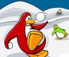 Penguins une guerre de neige dans le Club Penguin