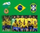 L'équipe nationale du Brésil, Groupe B, Argentine 2011