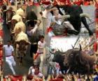Course de taureaux ou encierro, Sanfermines. Pampelune, Navarre, Espagne. Fêtes de San Fermín du 6 au 14 Juillet