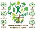 2011 Année internationale des Forêts