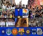 Coupe du Monde des Clubs de la FIFA Japon 2011