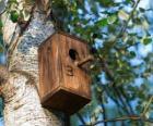 Petite maison de bois pour les oiseaux aux printemps