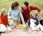 Pique-nique à la campagne pour profiter de la nature et la nourriture