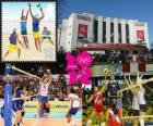 Volley-ball - Londres 2012-