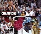 Miami Heat Champion NBA de 2012