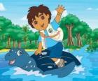Diego à la mer sur le carapace d'une tortue marine