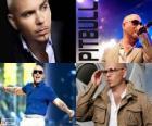 Pitbull (Armando Christian Pérez), est un producteur de musique d'origine cubaine