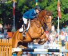 Saut d'obstacles. Le cavalier et le cheval dans un saut