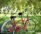 Tandem de deux cyclistes