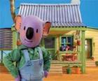 Frank est l'un des frères Koala australien