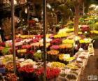 Marché aux fleurs, Amsterdam, Pays-Bas