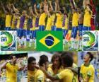 Brésil Coupe des confédérations 2013