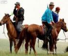 Xilingol chevaux originaire de Mongolie