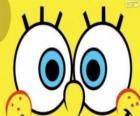 Aux yeux de Bob l'éponge