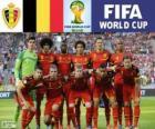 Sélection de Belgique, Groupe H, Brésil 2014