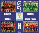 Groupe H, Brésil 2014